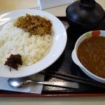 松屋カレーの食レポをしてみた